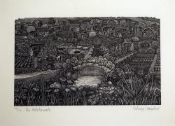 Hybrid Gallery Hilary Paynter The Allotments