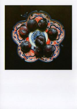 Niggy Dowler Hybrid Gallery Purple Plums on Flowered Plate