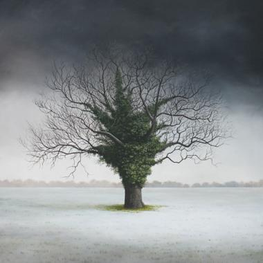 Hybrid Gallery Lee Madgwick A Dusting