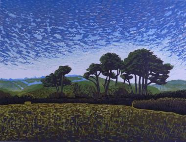 Hybrid Gallery Peter Ursem Trees Above Cotehele