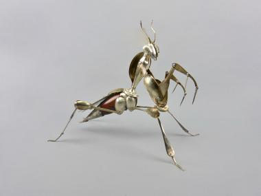 Hybrid Gallery Dean Patman Devil's Flower Mantis