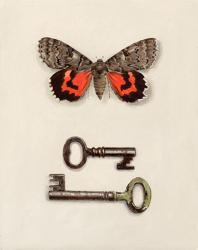 Red Winged Moth with Keys