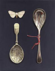 White Winged Moth with Two Spoons