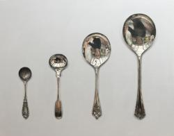 Hybrid Gallery Rachel Ross Spoons Arranged in Ascending Order