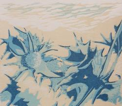 Hybrid Gallery Judith Westcott Sea Holly