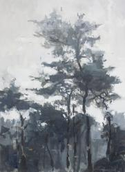 Hybrid Gallery Jon Doran Trees and Mist