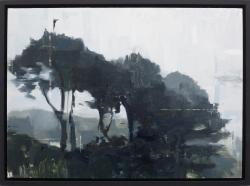 Hybrid Gallery Jon Doran Trees in the Mist 3
