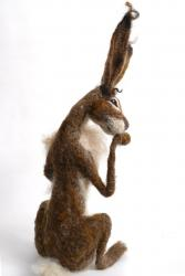 Hybrid Gallery Gemma Bee Brown Hare