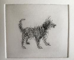 Hybrid Gallery Sally Muir Scribble Dog100 x 110 mm100 x 110 mm