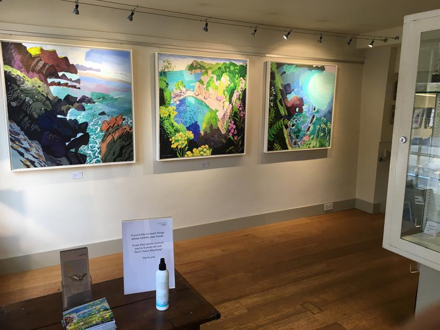 Hybrid Gallery Mark Rochester Coast Lines