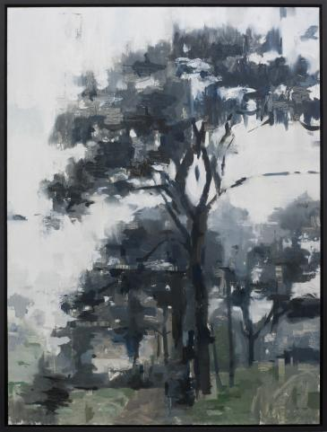 Hybrid Gallery Jon Doran Trees in the Mist 6